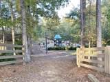 1061 Shadow Creek Way - Photo 3