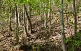 0 Hidden Springs Dr - Photo 5