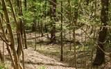 0 Hidden Springs Dr - Photo 7