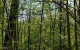 0 Hidden Springs Dr - Photo 9