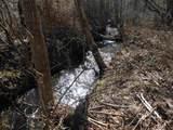 0 Duncan Bridge Rd - Photo 4
