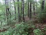 1.27 Mountain Creek Hollow - Photo 11