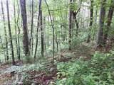 1.27 Mountain Creek Hollow - Photo 12