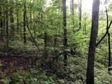 1.27 Mountain Creek Hollow - Photo 14