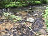 1.27 Mountain Creek Hollow - Photo 19