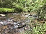 1.27 Mountain Creek Hollow - Photo 20
