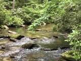 1.27 Mountain Creek Hollow - Photo 21