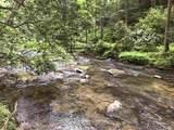 1.27 Mountain Creek Hollow - Photo 22