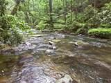 1.27 Mountain Creek Hollow - Photo 23