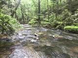 1.27 Mountain Creek Hollow - Photo 25