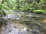 1.27 Mountain Creek Hollow - Photo 27