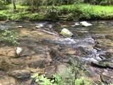 1.27 Mountain Creek Hollow - Photo 31