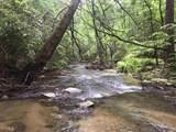 1.27 Mountain Creek Hollow - Photo 33