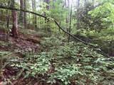 1.27 Mountain Creek Hollow - Photo 34