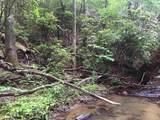 1.27 Mountain Creek Hollow - Photo 35