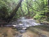 1.27 Mountain Creek Hollow - Photo 38
