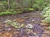 1.27 Mountain Creek Hollow - Photo 4