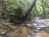 1.27 Mountain Creek Hollow - Photo 42