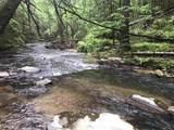 1.27 Mountain Creek Hollow - Photo 43