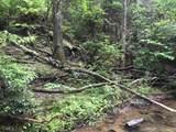 1.27 Mountain Creek Hollow - Photo 44