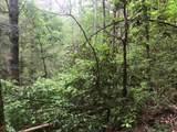 1.27 Mountain Creek Hollow - Photo 46