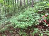 1.27 Mountain Creek Hollow - Photo 48
