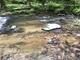 1.27 Mountain Creek Hollow - Photo 5