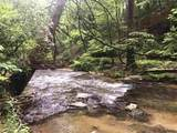 1.27 Mountain Creek Hollow - Photo 7