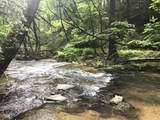 1.27 Mountain Creek Hollow - Photo 8