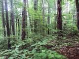 1.27 Mountain Creek Hollow - Photo 9