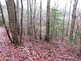 0 Millstone Mountain Ln - Photo 6