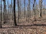 0 Shoals Ridge - Photo 4