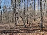 0 Shoals Ridge - Photo 5