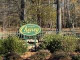 85 Cheney Lake Dr - Photo 22