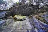 7735 Wolf Creek Rd - Photo 76
