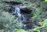 0 Golden Bear Pass - Photo 8