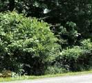 0 War Hill Park Rd - Photo 6