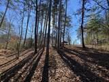 0 Horseshoe Bend Dr - Photo 15