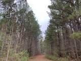 0 Mt Pilgrim Rd - Photo 4