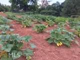 149 Elmina Dr - Photo 70