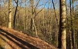 0 Whisper Woods - Photo 21