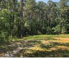 1645 Mount Carmel Rd - Photo 5