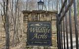 0 Skyview At Wildlife Acres - Photo 6