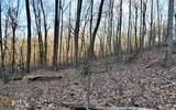 0 Trailwood Dr - Photo 8