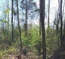 0 Redbone Run - Photo 6