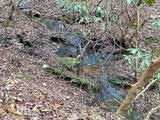 0 Clay Creek Falls Rd - Photo 10