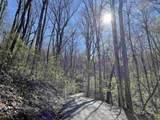 0 Oakey Mountain Road - Photo 3