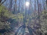 0 Oakey Mountain Road - Photo 4