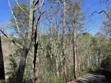 0 Oakey Mountain Road - Photo 5