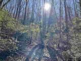 0 Oakey Mountain Road - Photo 8
